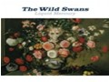 Liquid Mercury by The Wild Swans
